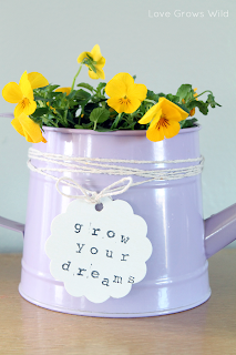 Grow Your Dreams Watering Can Planter by Love Grows Wild www.lovegrowswild.com #garden #flowers #diy