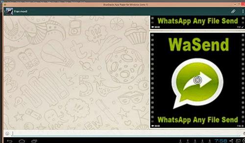 limitacion archivos whatsapp