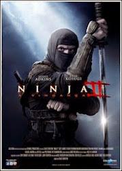 Baixe imagem de Ninja 2   A Vingança (Dual Audio) sem Torrent