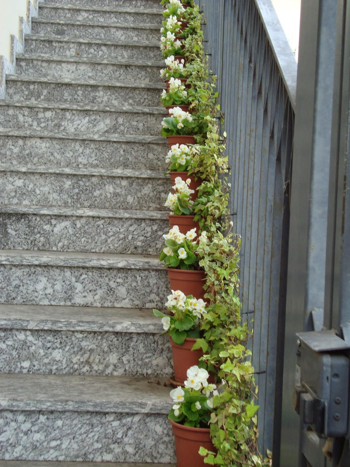 Un piccolo giardino in citt una lunga scala di fiori - Scale da giardino ...
