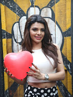 Hindi Actress Sherlyn Chopra photos-cover-photo