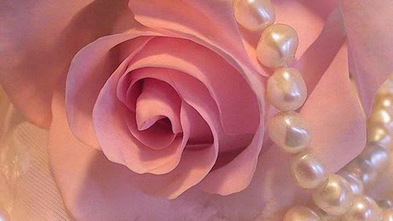 7 imagenes de regalos de rosas rojas y frases tiernas para  - Imagenes De Mujeres Con Rosas Rojas