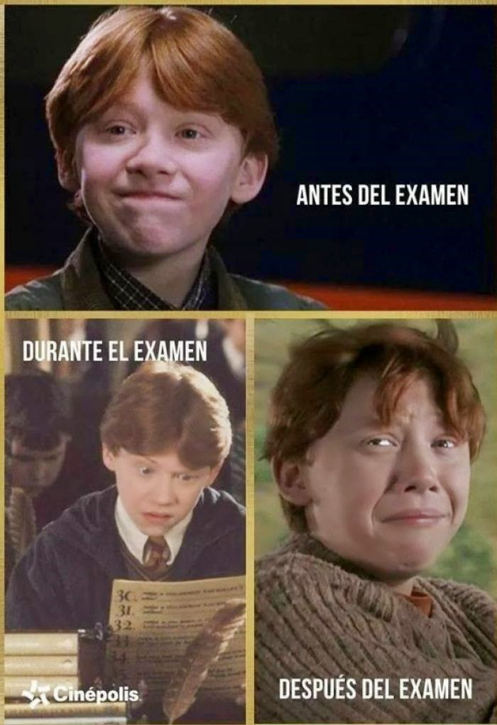 Ron Weasley - Antes, durante y después del examen