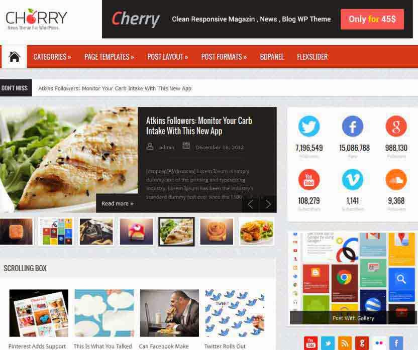 Cherry Responsive WordPress News, Magazine, Blog