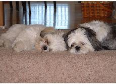 Baxter & Herky