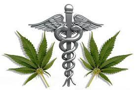 cannabis medicinal pode salvar vidas