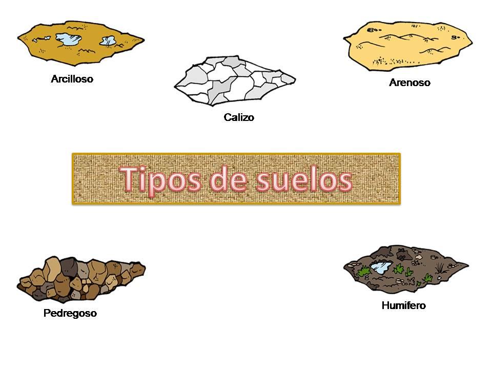 Tipos de suelos tipos de suelos - Suelos para ninos ...
