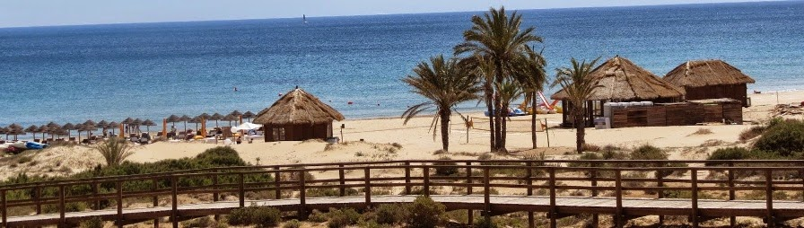 The best of Arenales del Sol, Elche, Alicante