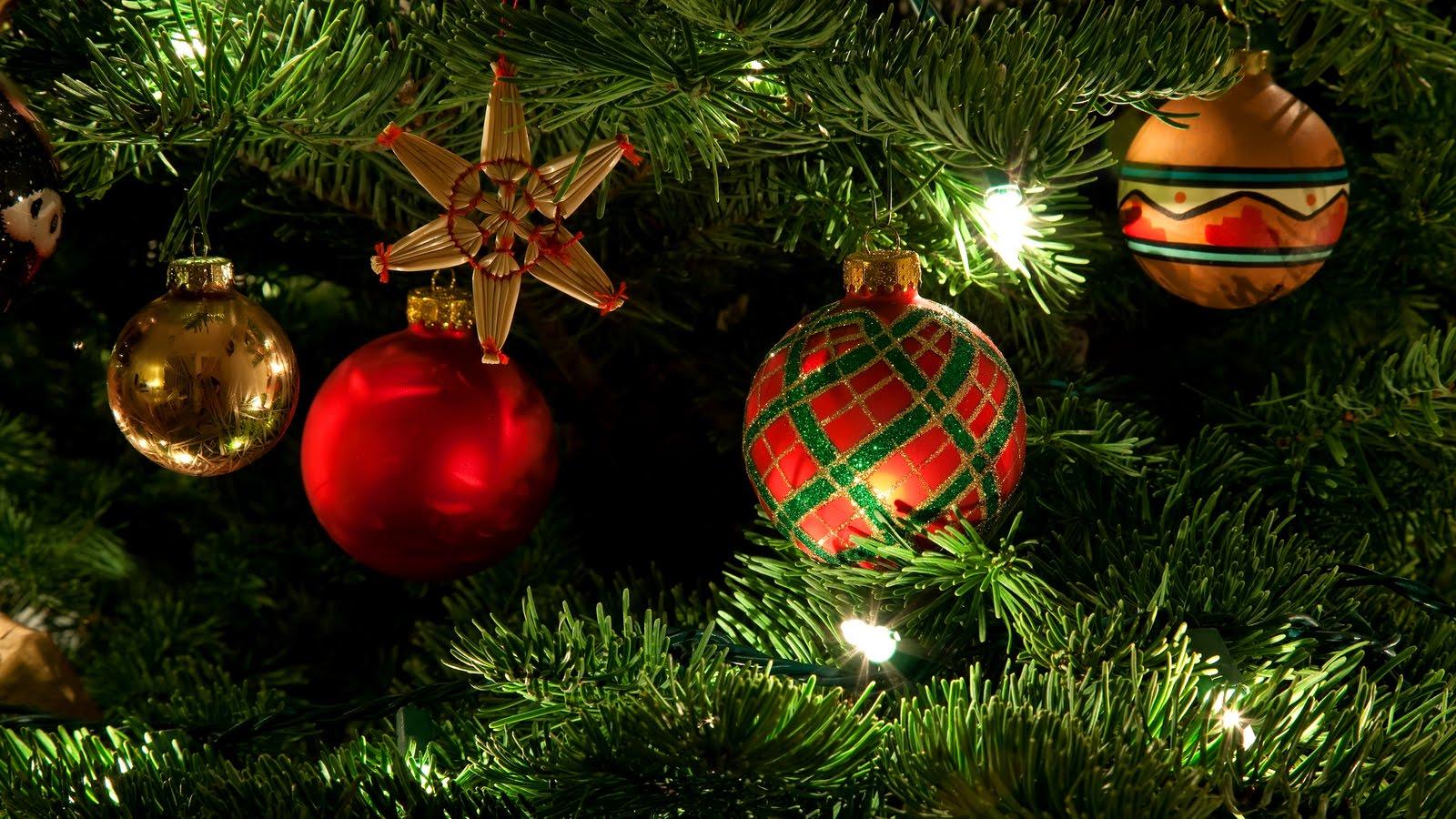 BANCO DE IMÁGENES: Arbol o pinito de Navidad con esferas de colores