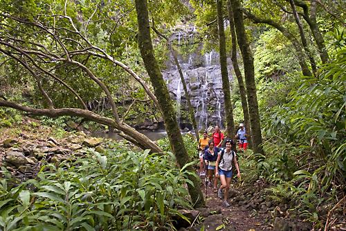 Kohala Ditch Trail Big Island