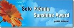 """Premios """"Sol brillante"""""""