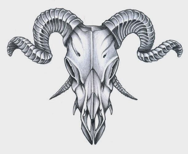 Animal skull male goat  tattoo stencil