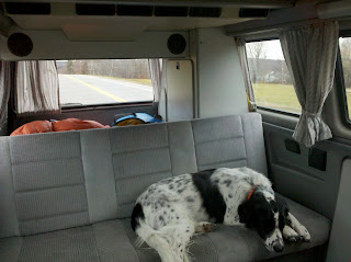 vanagon road trip dog