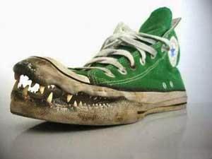 Sepatu Sneakers Buaya