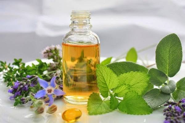 how to use oregano oil for yeast infection
