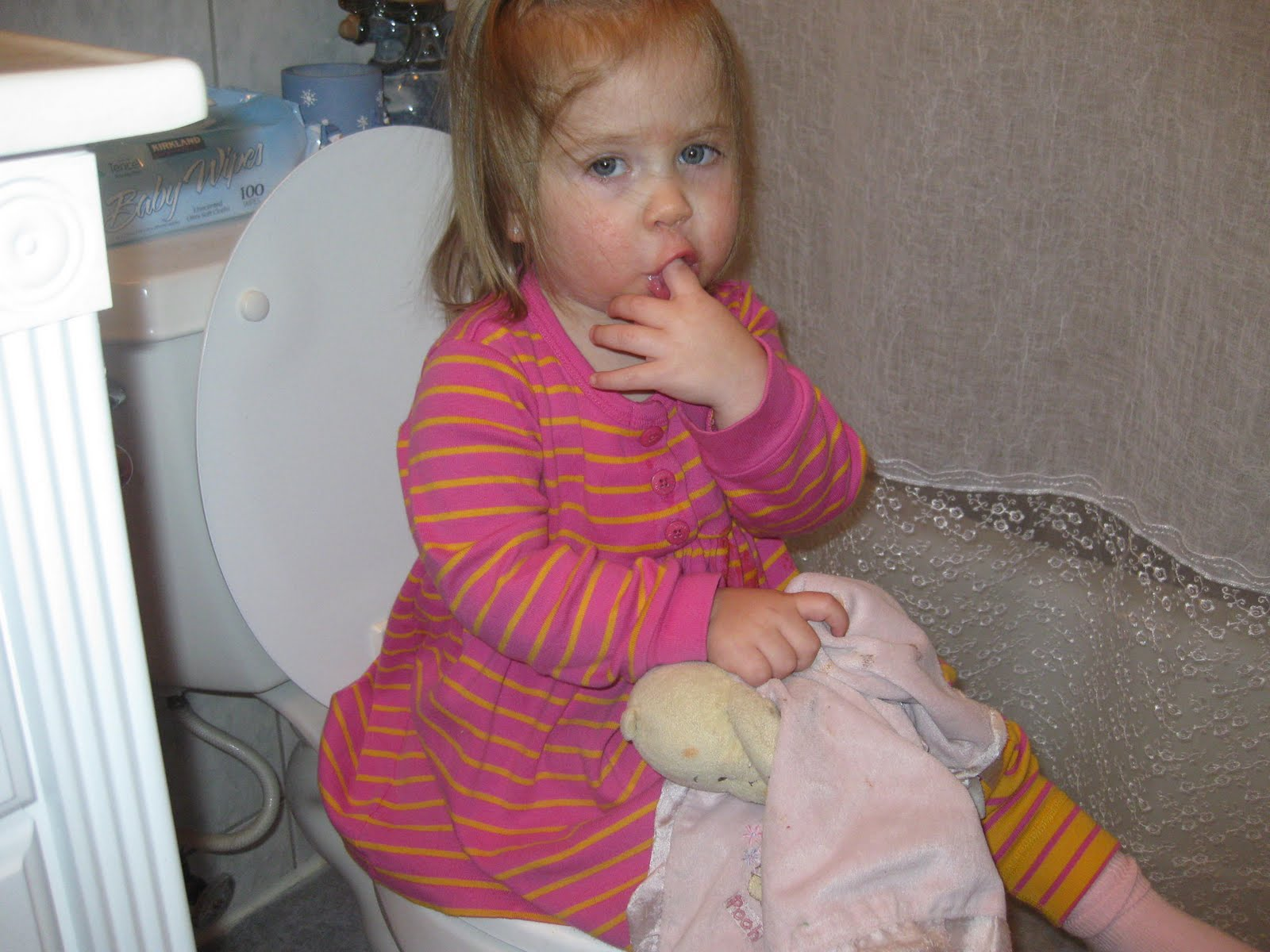 How to potty train a girl toddler in one day