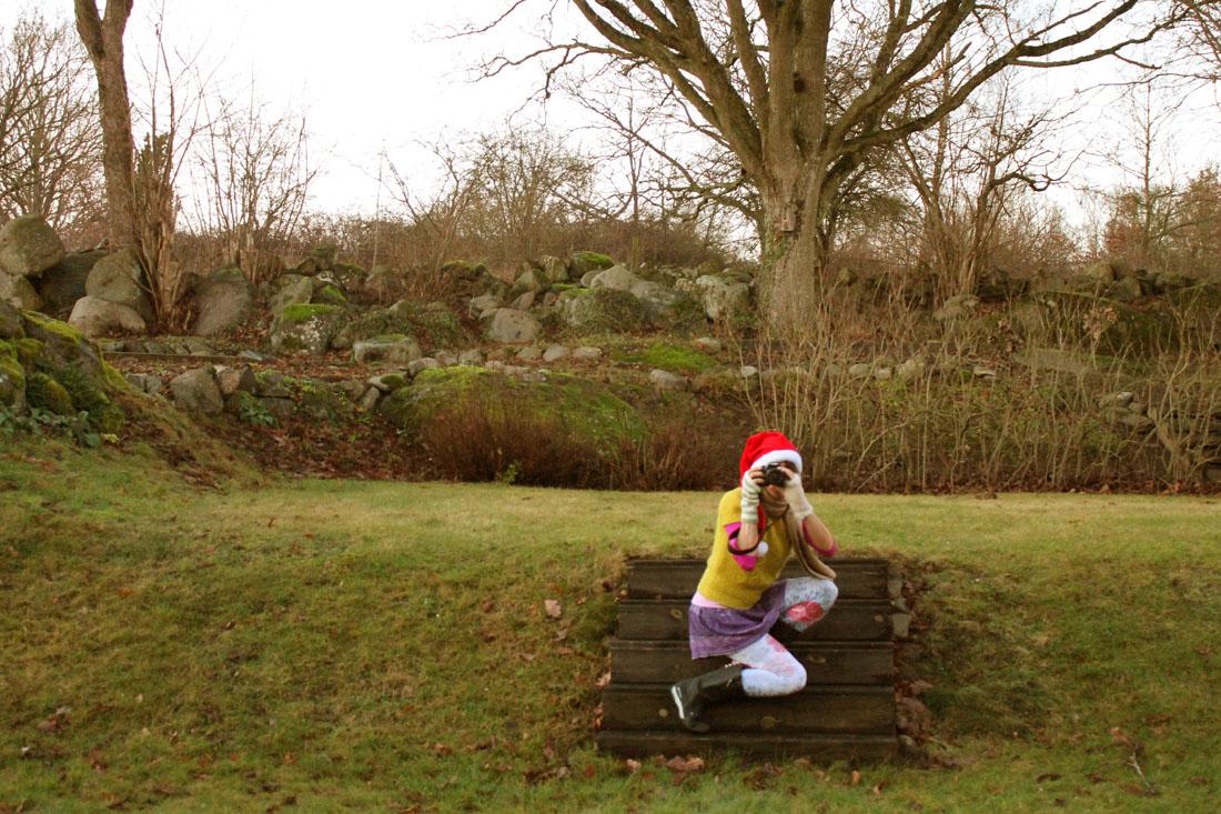 15 dicembre 2015 colorata in giardino :-)