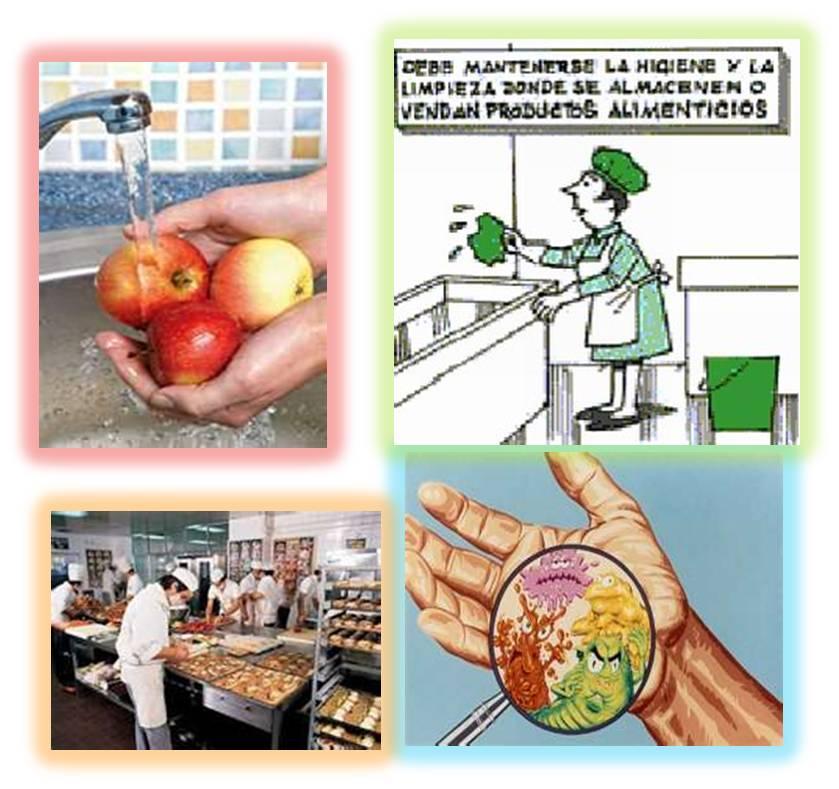 Higiene alimentaria for Manual de buenas practicas de higiene y manipulacion de alimentos