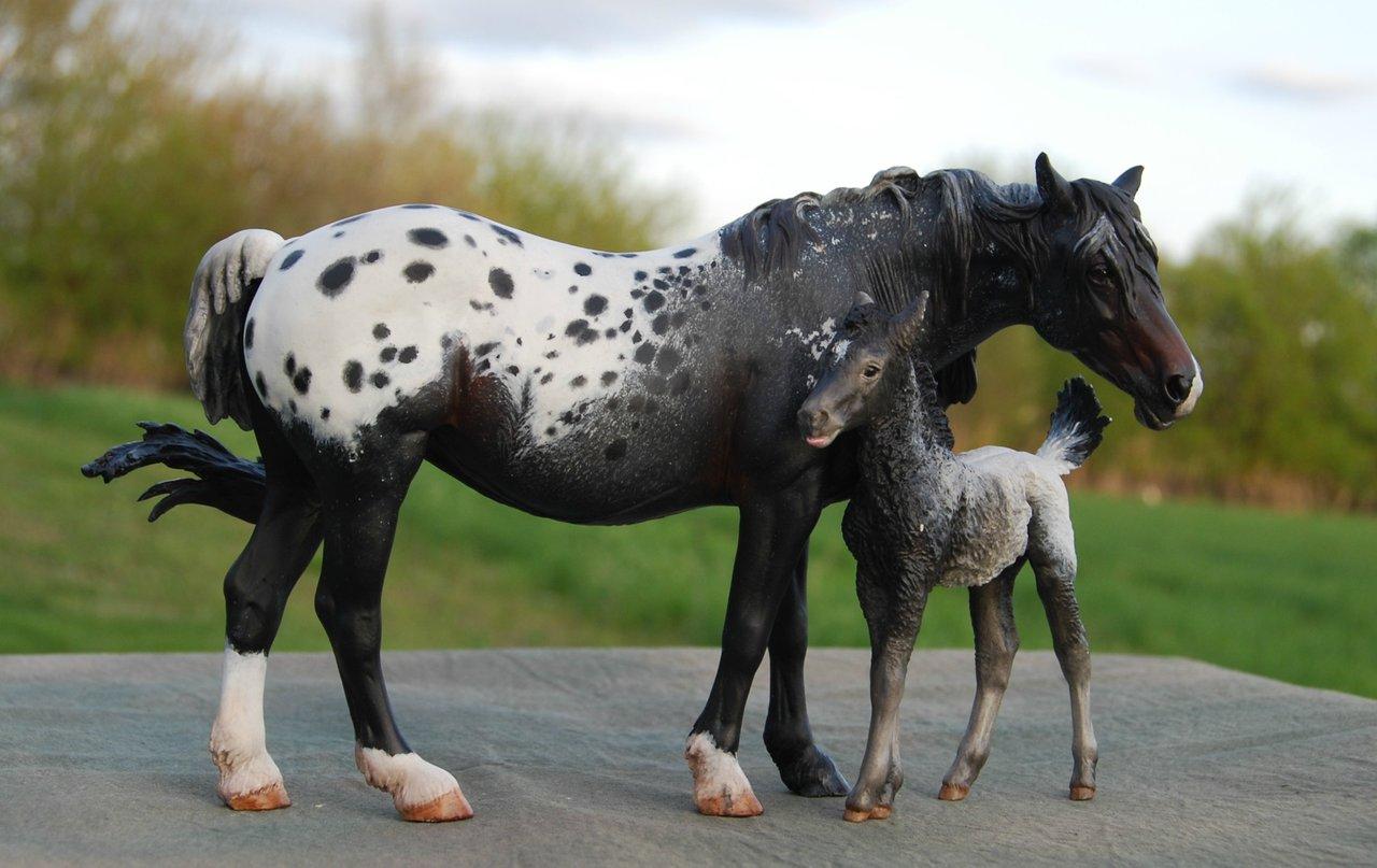 Foto frontera caballos y pegasos de cer 225 mica y porcelana en colores