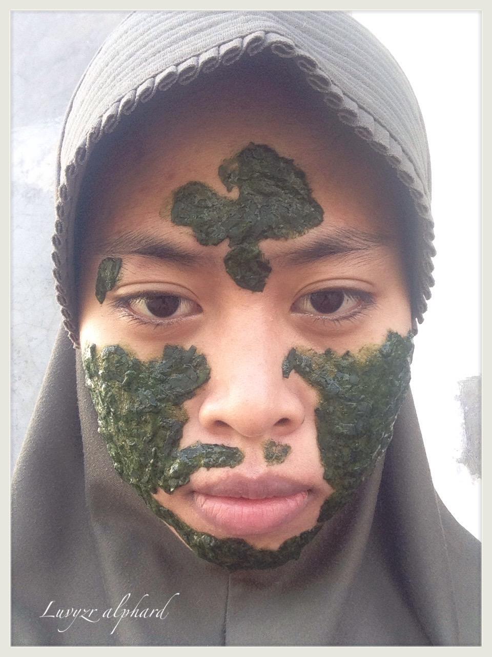 Hasil gambar untuk masker daun sirih