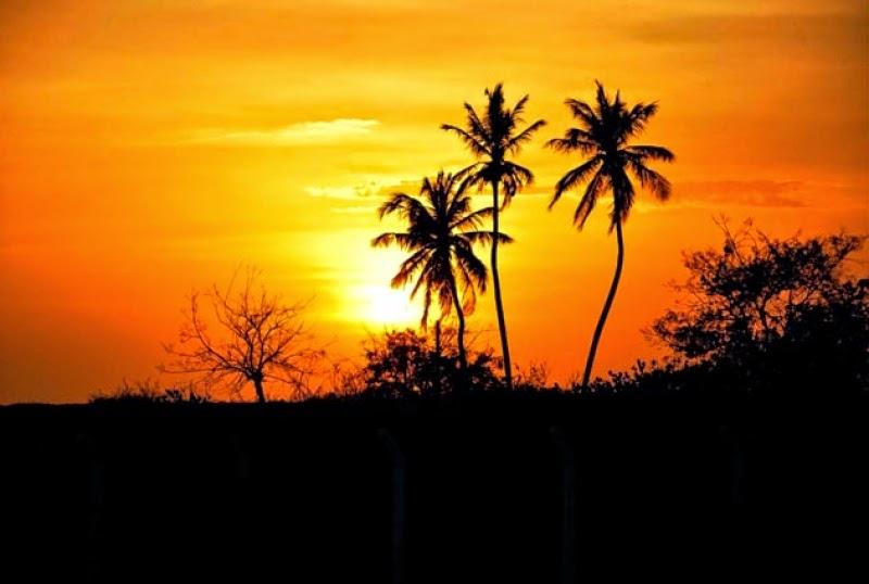 Sol a Sol poema in nós, poéticos e Literátios