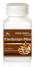 http://www.terapiobatherbal.web.id/cordyceps-plus-capsule/