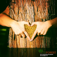 De la naturaleza al corazon, del corazón a ti.