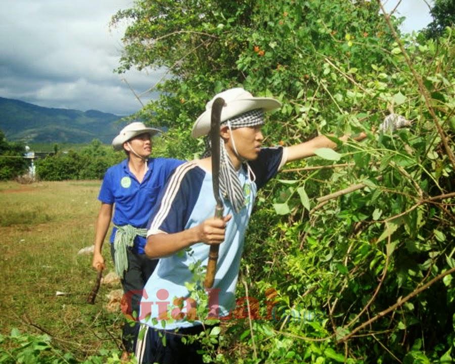 Chiến dịch Thanh niên tình nguyện hè 2014: Đi để cống hiến và trưởng thành