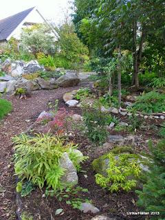 Trädgårdslund