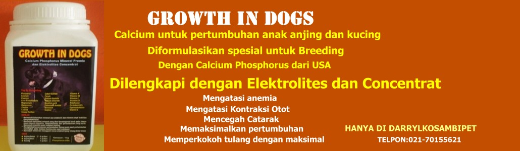 Calcium pertumbuhan tulang anak anjing - Growth in dogs