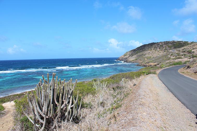 Narrow Island Roads