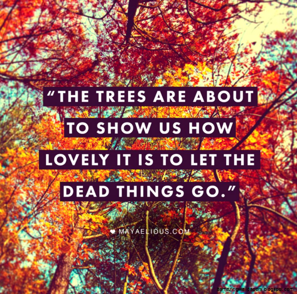 1000 Fall Quotes on Pinterest  Fall Quotes Tumblr Quotes About