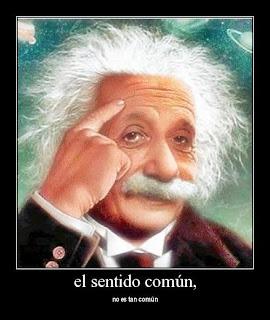 Sentido común a lo Einstein.jpg______Www.cosasycasosdehotelesyrestaurantes.blogspot.com____Angel Paz