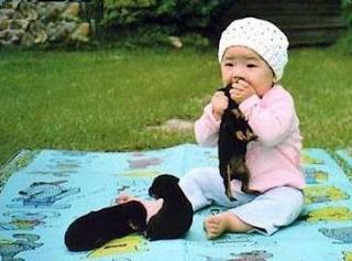 smešne slike: kinesko dete jede štenad