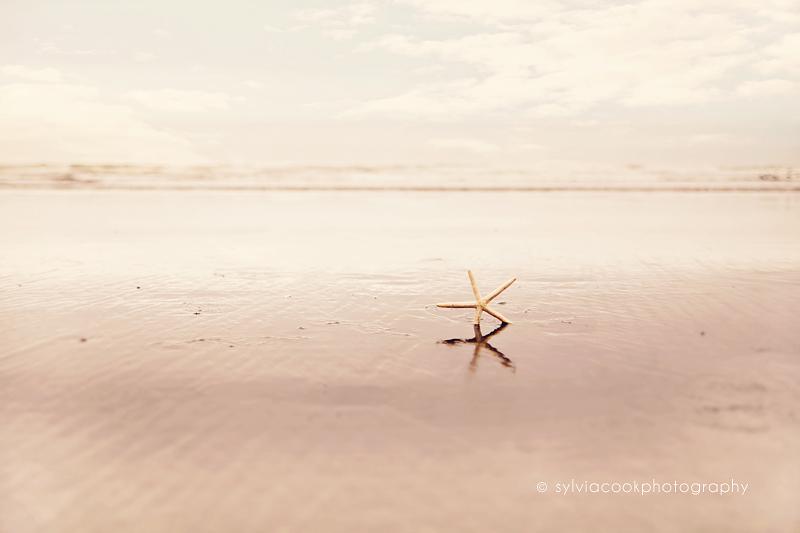 beach, ocean, Ocean Shores, Washington, Etsy