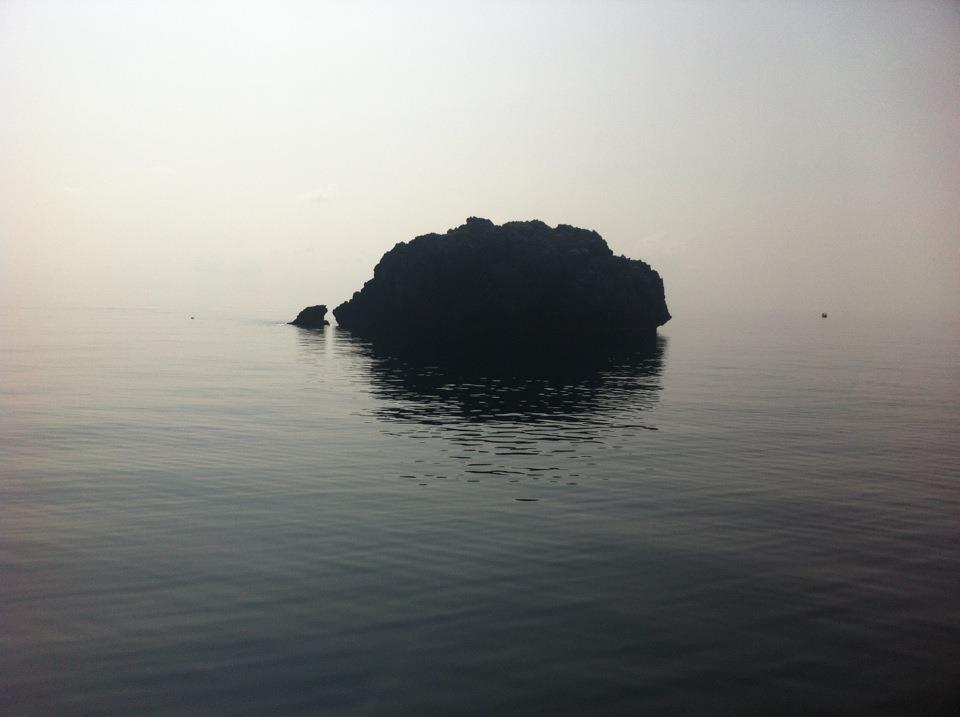 Flexible Fridge Magnet Photo Of  SEA WORLD//