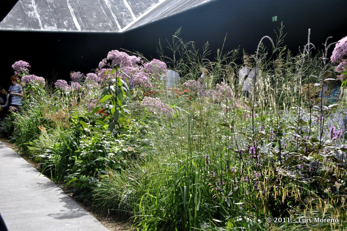 Luis moreno garden designer in fulham hortus conclusus for Piet oudolf serpentine gallery