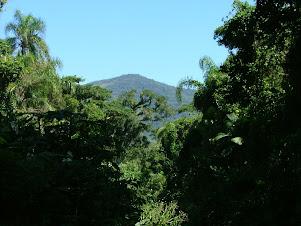 Parque Natural do Pântano do Sul