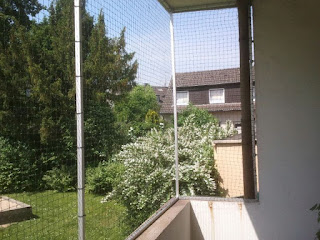 Essen Balkon Katzensicher