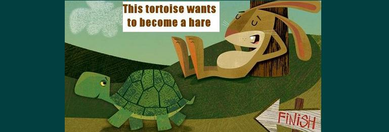 This Tortoise Wants To Become A Hare