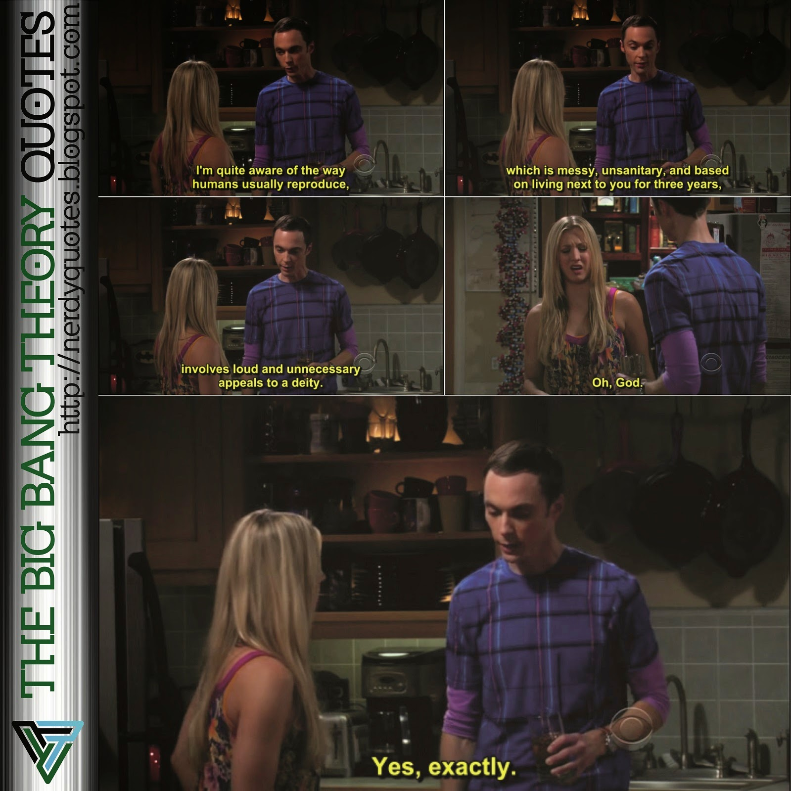 The Big Bang Theory Quote-32