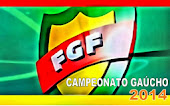 GAUCHÃO 2014
