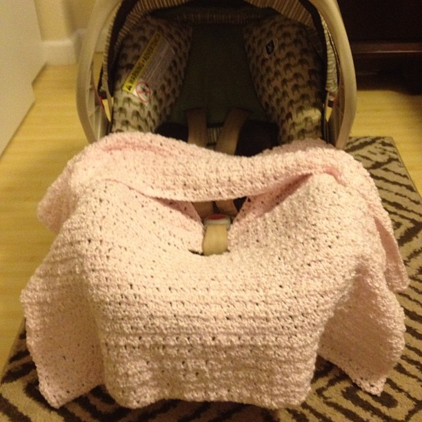 My Life Before I Kick The Bucket Crocheted Car Seat Blanket