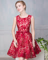 Crimson/Red Lace Embroidery Flare Cocktail Dress