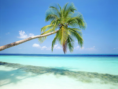 High Quality Blue sea wallpapers with white sand and blue sky