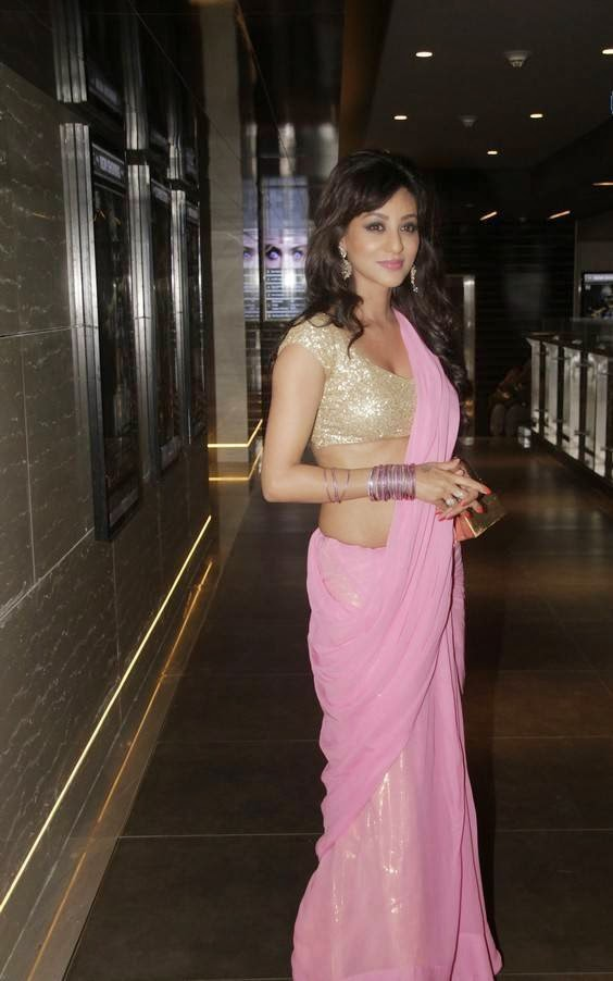vedita pratap singh sexy low waist saree pics