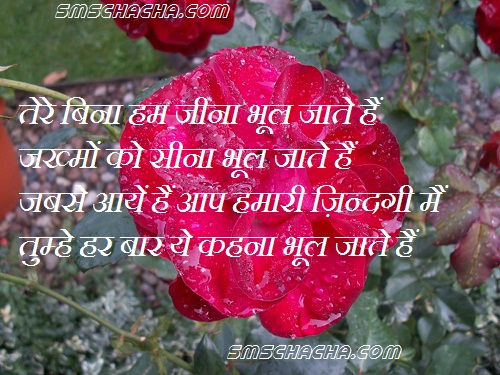 shayri wallpapers: best love quotes in hindi images