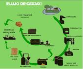 Clico Del Cacao