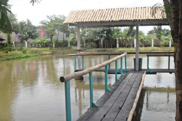 Fish pond where anyone get catch fresh tilapia