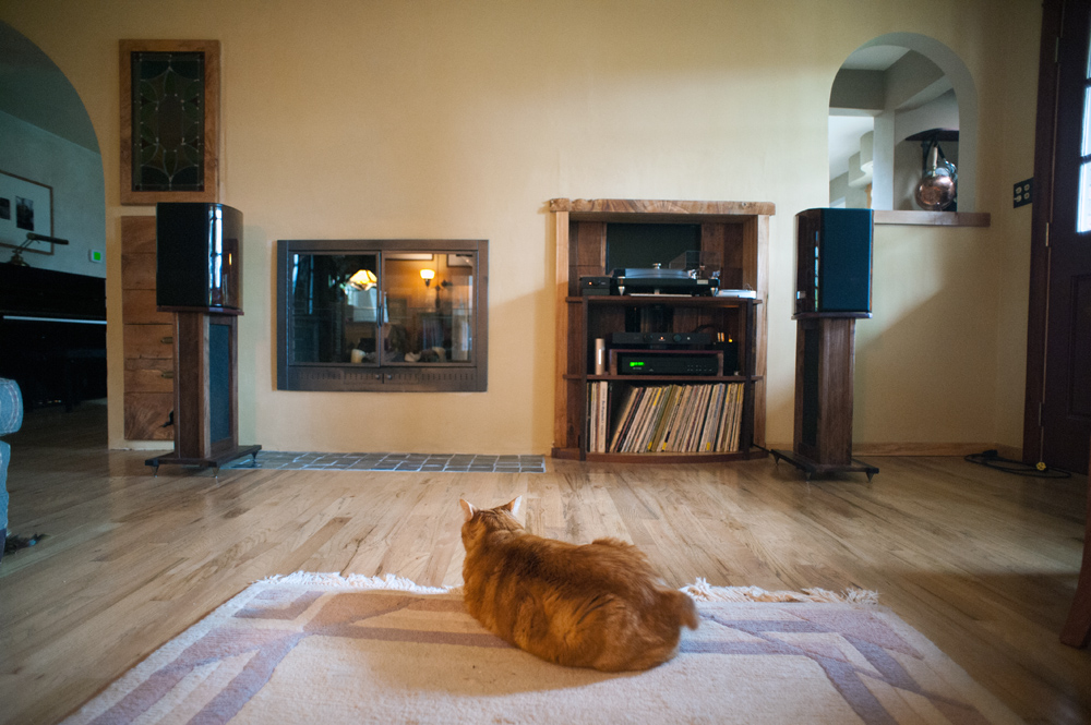 The Marcial Chronicles Living Room To Music Library